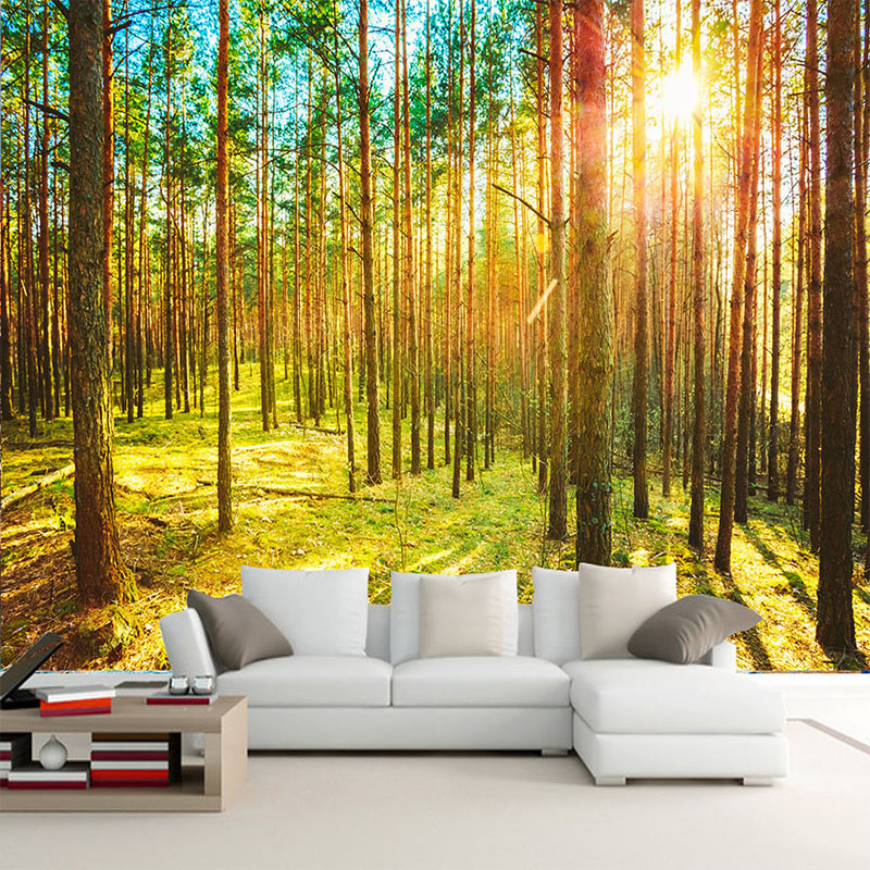 forest bedroom nature living wall mural landscape sunshine backdrop papel sofa tv 3d parede paisagem wallpapers