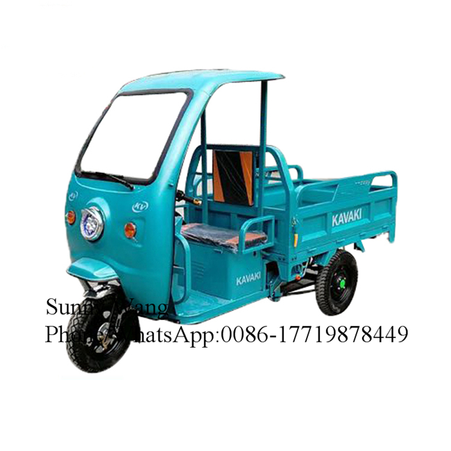 Drum Brake Three Wheel Cargo Bike Electric Cargo Bicycle With Cabin Reverse Cargo Trike Moped Tricycle Cargo