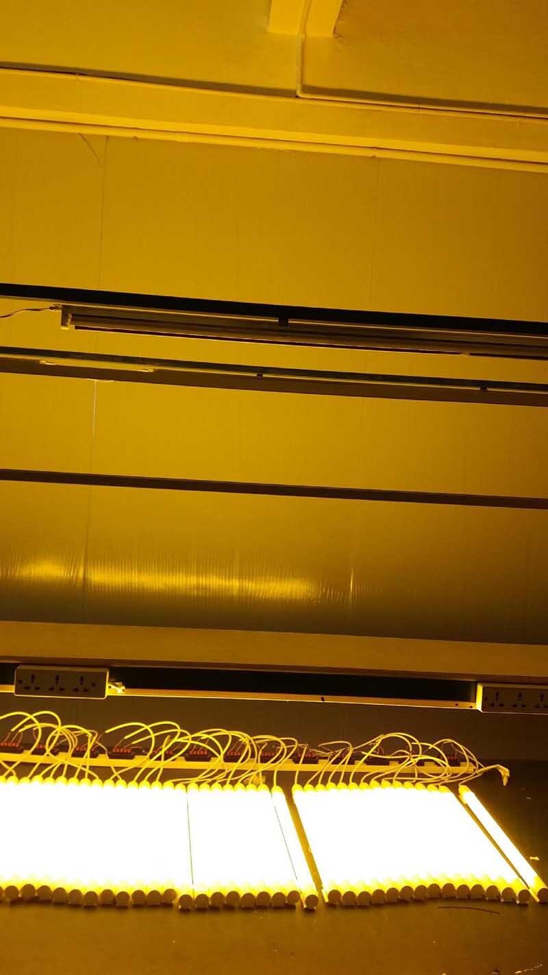 0320 warm white 2500K  T8 LED Tube lamps lights lightings 01