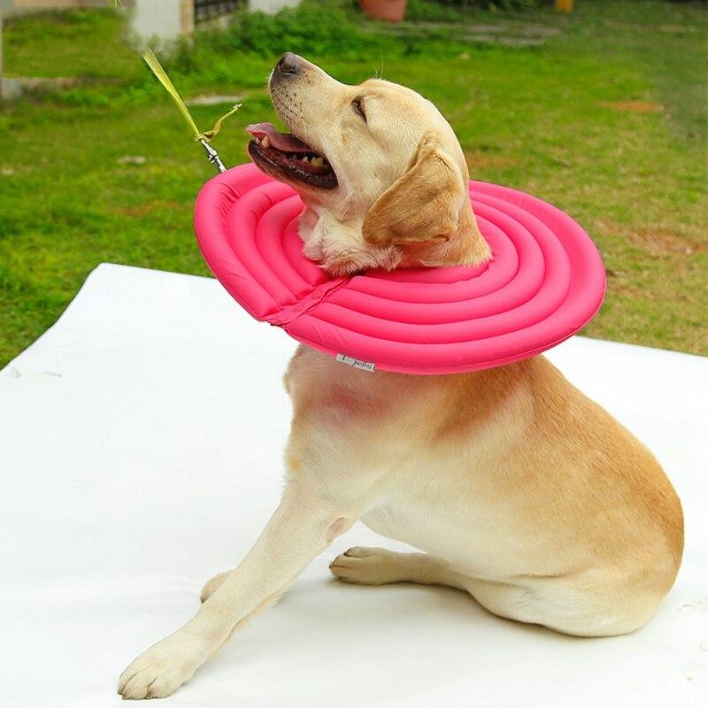 Hund Schutz Kragen Pet Recovery Kragen für Hunde und Katzen Super Licht Elizabeth Schutz Kragen Welpen Hund Liefert