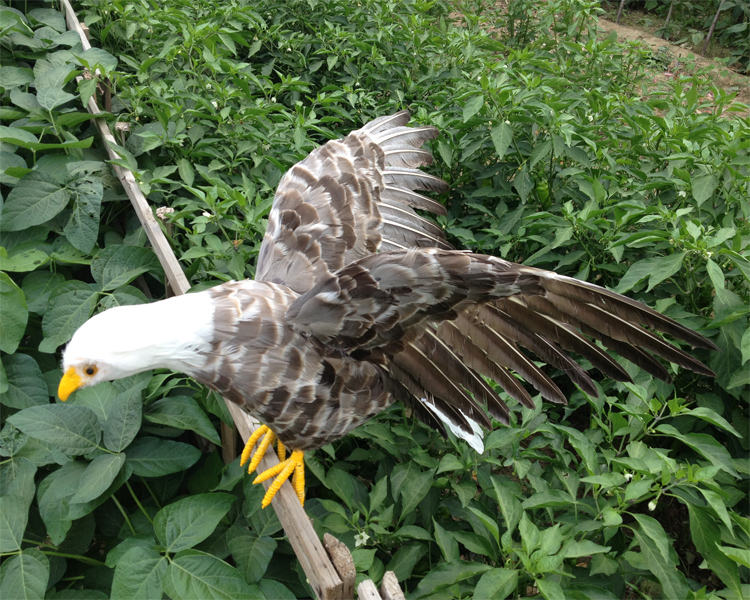big creative simulation gray eagle model foam&furs wings eagle gift about 90x46cm 0938 mantra 0938