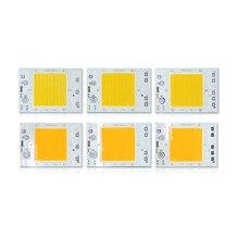 цена на 10 PCS LED Chip Lamp 30W 40W 50W AC 110V 220V Smart IC Fit For DIY LED Flood Light Spot lamp Street lamp Cold White Warm White