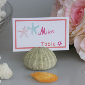 Free Shipping(10 pcs/lot)Green Sea Urchin Place Card Hold for Beach Wedding Natural Shell Conch Reception Table Chic Decor