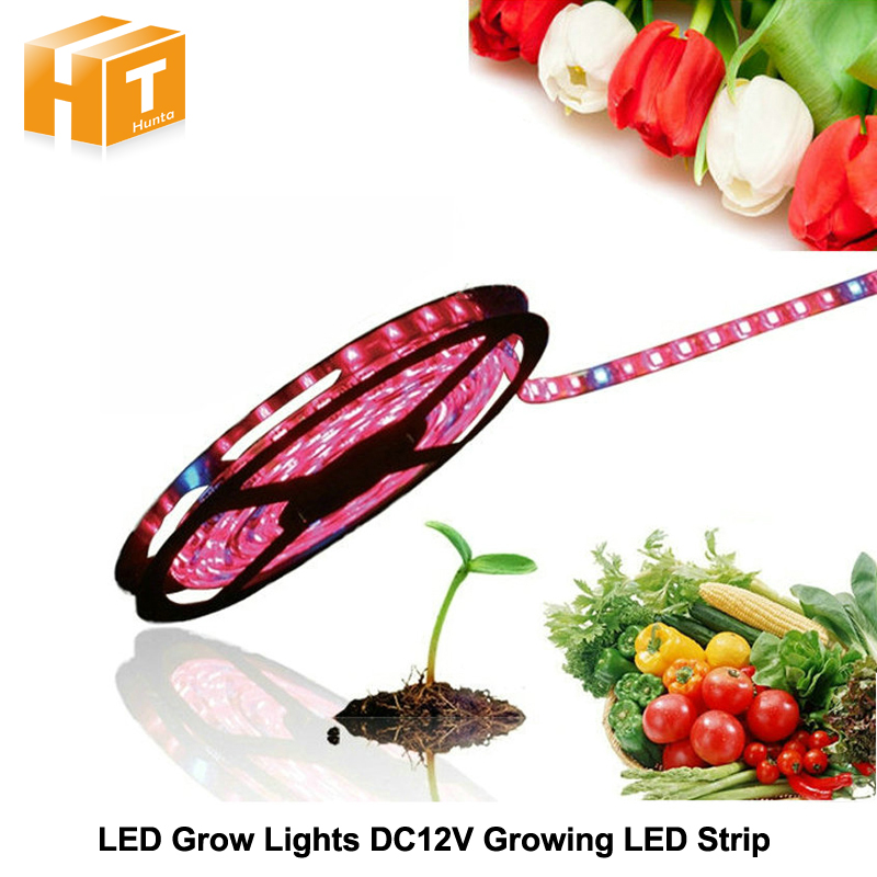 LED Plant Grow Lights 5050 LED Strip DC12V Red Blue 3:1 4:1 5:1 for Greenhouse Hydroponic Plant Growing 5m/lot zdm 5m 72w led plant light strip 300pcs 5050 5 red 1 blue group dc 12v