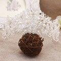 Большая бабочка с полной pearl нежные quinceanera тиара свадьбы тиару жемчуг свадебный венец
