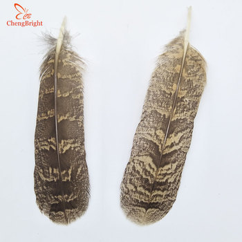 Wholesale 50pcs High Quality Natural Pheasant Feathers Tail Feathers 25-30cm/10-12inch Plume Decoration Diy Accessories Crafts