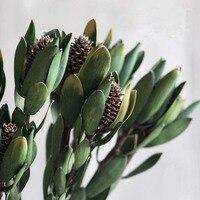 חתיכה אחת עץ מיובש שושן מיובשים טבעיים צמח שילוב עם קישוט ריהוט לבית אמנות בעבודת יד עלה לוטוס אמיתי