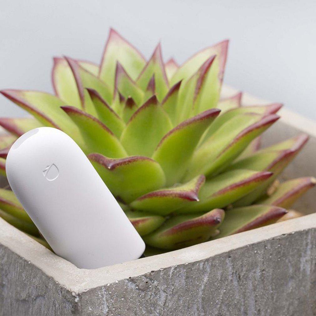 Original International Version Xiaomi Mi Flora Monitor Digital Plants Grass  Flower Care Soil Water Tester Sensor Plant Detector
