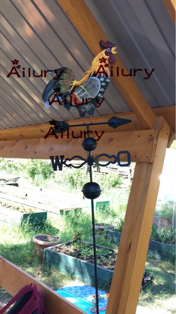 H120cm, europese traditionele geverfde haan wind vane.flower insert, - Tuinbenodigdheden - Foto 3