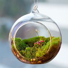 Terrarium Ball Globe Shape Clear Hanging Glass Vase Flower Plants Terrarium Container Micro Landscape DIY Wedding Home Decor(China)