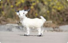 Zilin Manufacturer / vivid mini goat toy/sheep toy,sheep decoration for shop, 14*4*14 cm