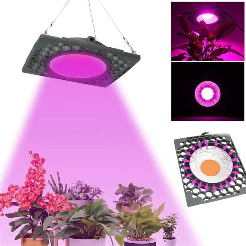 1000W COB led grow light Full spectrum grow led 400-830NM Honeycomb cooling 4500lm for indoor grow tent seeding plant grow