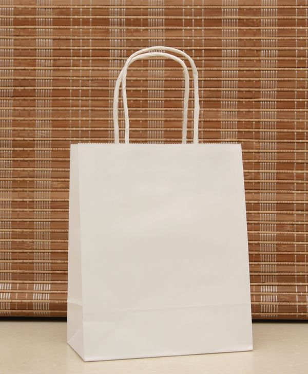 50 Pcs White Kraft Paper Gift Bag With Handle  Party Favor Treat Bag TB60