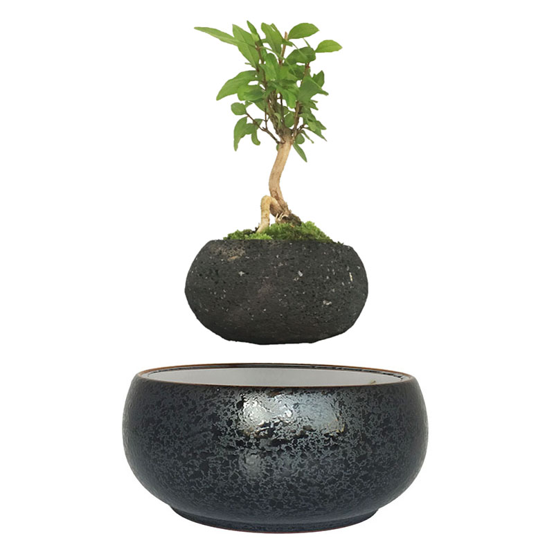 2018 Japan Magnetic Levitation Floating Plants Ceramics Glaze Bonsai Pot Birthday Gifts For Men Free Shipping No Plant