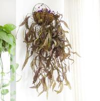 6 шт. висит искусственные листья папоротника Стены Плющ гирлянды Вайн зелень для растения стены Свадебные Офис бар декоративные