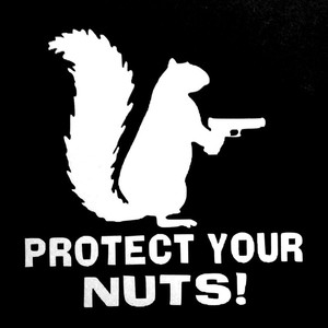 Image 2 - SLIVERYSEA Protect Your Nuts Squirrel Police Army Navy Marines Car Stickers And Decals Creative Sticker Black Sliver #B1081