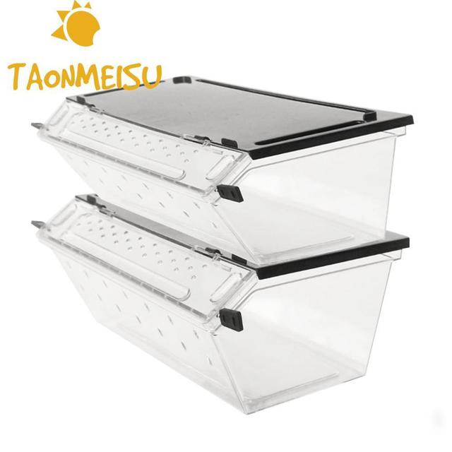 US $7 99 33% OFF Top selling Reptile Box Reptile Terrarium Durable  Transparent Acrylic Breeding Animals Insect Live Food Feeding Box-in  Terrariums