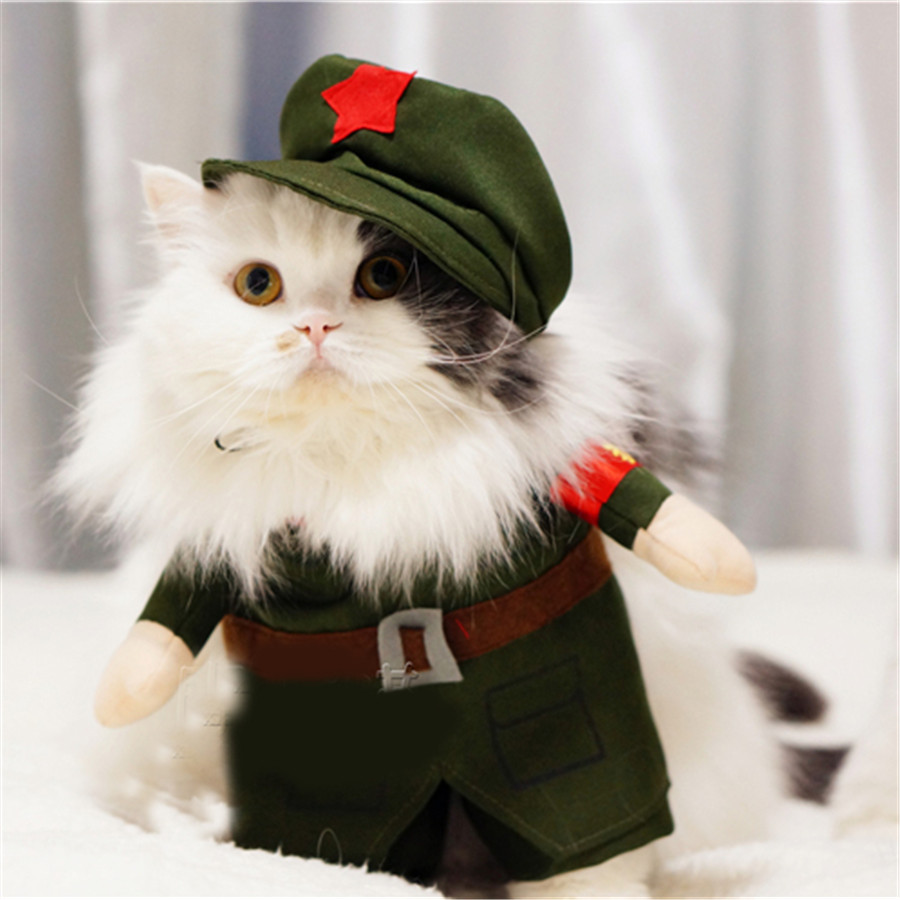 Pet Supplies Cat Cat Pet Products Clothes Cats Wear Blusao Jackets Green Clothes For Animals Pet