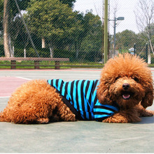 Fashion Striped Pattern Dog Clothes