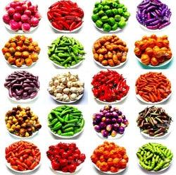 10 pièces/ensemble Miniature fruits légumes cuisine artificielle fausse aubergine concombre pomme décor à la maison cuisine jouet pour filles cadeau