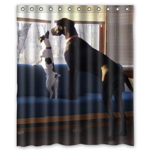 Great Dane Stand On Sofa Looking At Something Shower Curtain 60 X 72 Inch Bathroom In Curtains From Home Garden Aliexpress