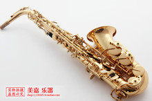 UPS/Fedex Free shipping Selmer SAS-54 Gold Plated Alto Eb Saxophone E-Flat Sax with mouthpiece,gloves,reeds,case