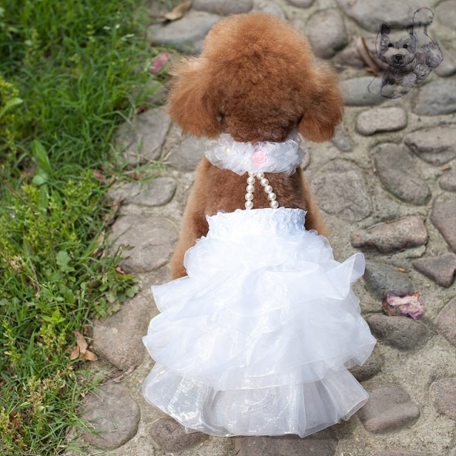 Pet Dog Ruffled Dress Puppy Doggy Luxury Party Wedding Dresses Bridal Gown For Bichon Poodle Teddy