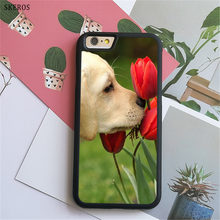 SKEROS I love my Beagle Dogs 5 (2) phone case for iphone X 4 4s 5 5s 6 6s 7 8 6 plus 6s plus 7 & 8 plus #B325(China)