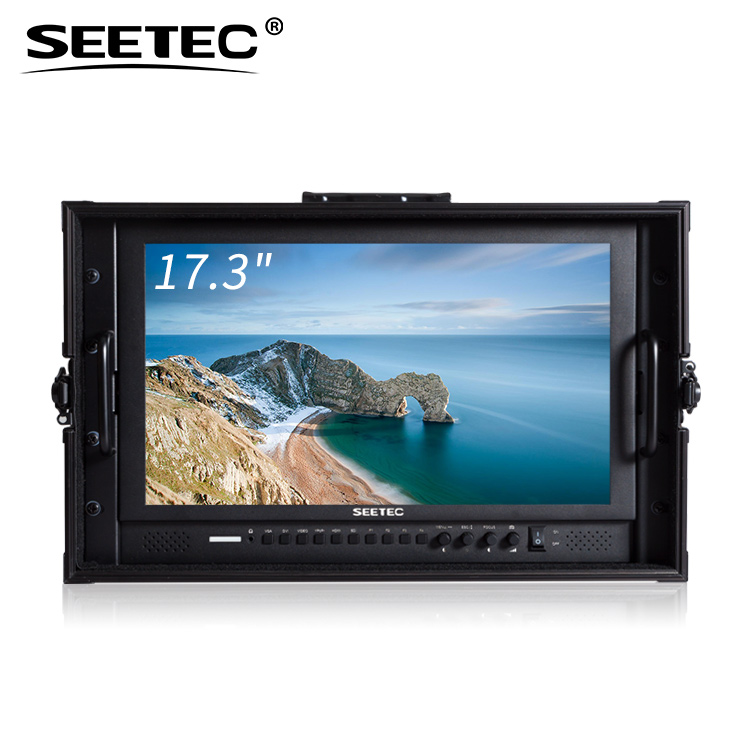 купить SEETEC P173-9HSD-CO 17.3