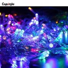 new waterproof led ac220v eu plug led string lights for xmas garland party wedding decoration christmas flasher fairy light - Christmas Light Flasher Plug