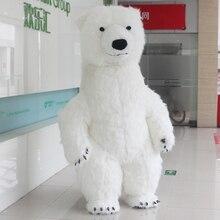 m Maskottchen Eisbär Zu