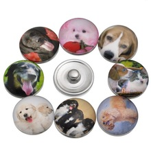 10Pcs Mixed Dogs Chien Patterns Glass Round Click Snap Press Buttons Fashion Crafts Making 18mm