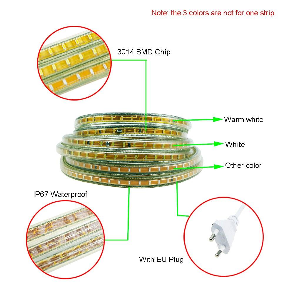 Led Kitchen Garden: AC220V Led Strip 3014 120leds/m SMD Flexible Light 1M 2M