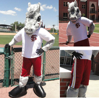 Professional Custom Football Team Horse Mascot Costume Animal Suit Halloween Christmas Birthday Full Body Props Costumes Outfit