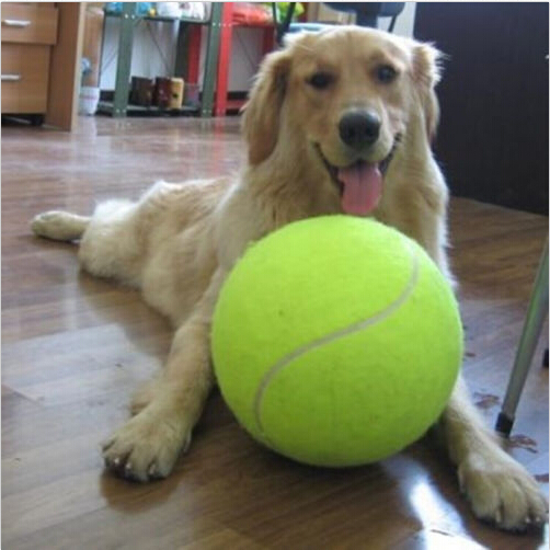 1PC 24CM Big Inflatable Tennis Ball Giant Pet Toy Tennis ...