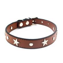 Leather Star Dog Collar
