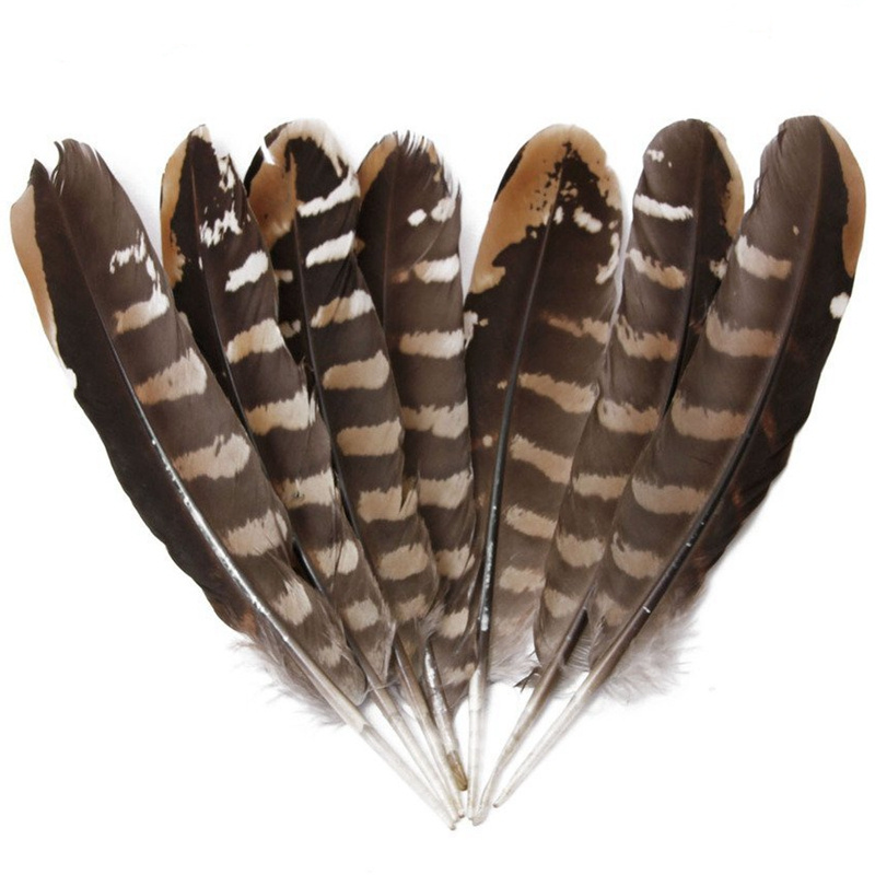 """Wholesale 10Pcs Scare Natural Eagle Feathers 15 20CM 6 8"""" Pheasant Feathers for Crafts Jewelry Making Wedding Decoration Plumas