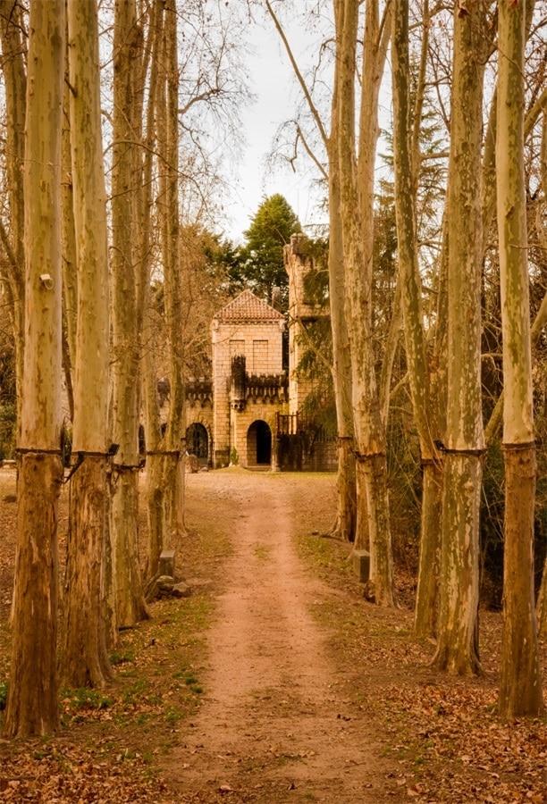 Laeacco Pedesaan Musim Gugur Gugur Daun Pohon Pathway Scenic