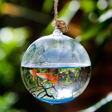Diameter 8cm 10cm 12cm Glass Terrarium Aquarium Hanging Glass