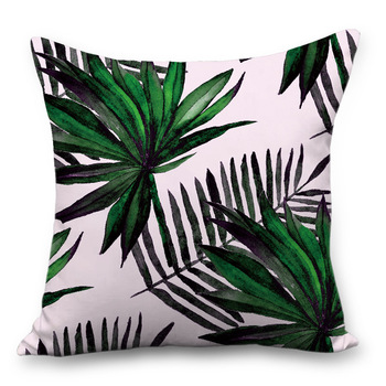45*45tropical rainforest plant cha