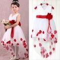 Ocasion Bebé Niñas Princesa de Las Flores Del Banquete de Boda de Tul Vestido de Lujo Up 2-7Y