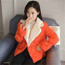 Pregnant women jacket winter fashion small cotton-padded jacket down cotton dress pregnant women double-breasted thick coat(China)