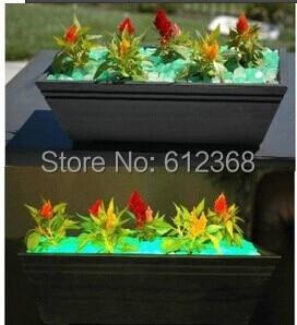 200 luminous cobblestones stones glow in the dark for. Black Bedroom Furniture Sets. Home Design Ideas