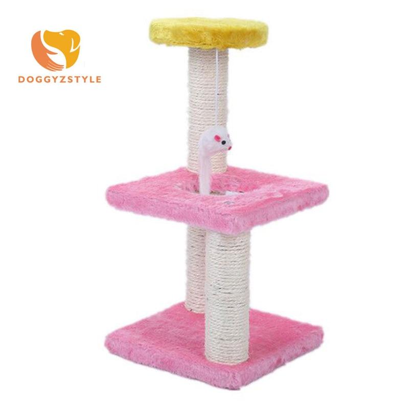 cat climbing shelf