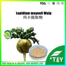 Pincredit Suministro de Extracto de Raíz de Maca Lepidium Meyenii Walp 200 g/lote