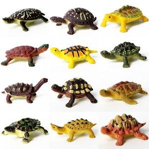 Image 5 - 12 adet eğitim gerçekçi sürüngen aksiyon figürleri ile set dinozor kertenkele timsah kaplumbağa mükemmel parti Model oyuncaklar