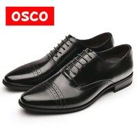 OSCO 패션 남성 정품
