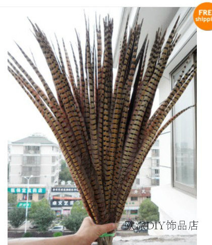 Free shipping 50 PCS long Natural color pheasant tail feathers 22 24inches 55 60cm