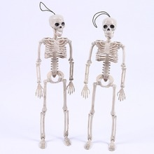 Novelty Cool Skeleton Mister Bride Human Model Skull Body Figure Toy Halloween