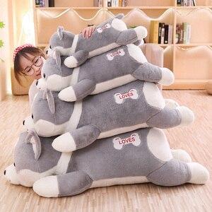 Image 3 - 55/95cm güzel Corgi köpek peluş oyuncak dolması yumuşak hayvan karikatür yastık çocuklar çocuklar için en iyi hediye